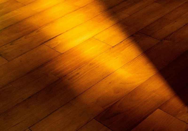 Sunbeam on Hardwood Floor by Classic Hardwoods